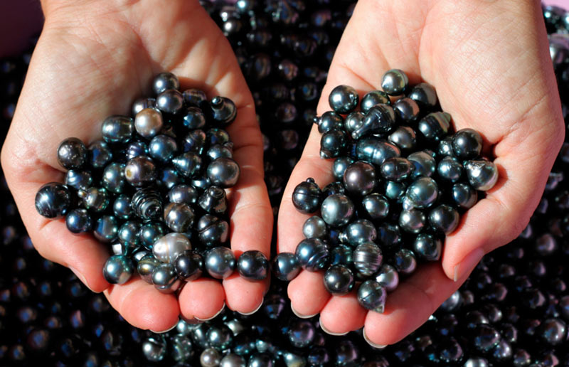 perles-tahiti-noire-mains-bijoux-piercing